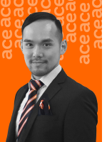 Damon Ng - Real Estate Agent