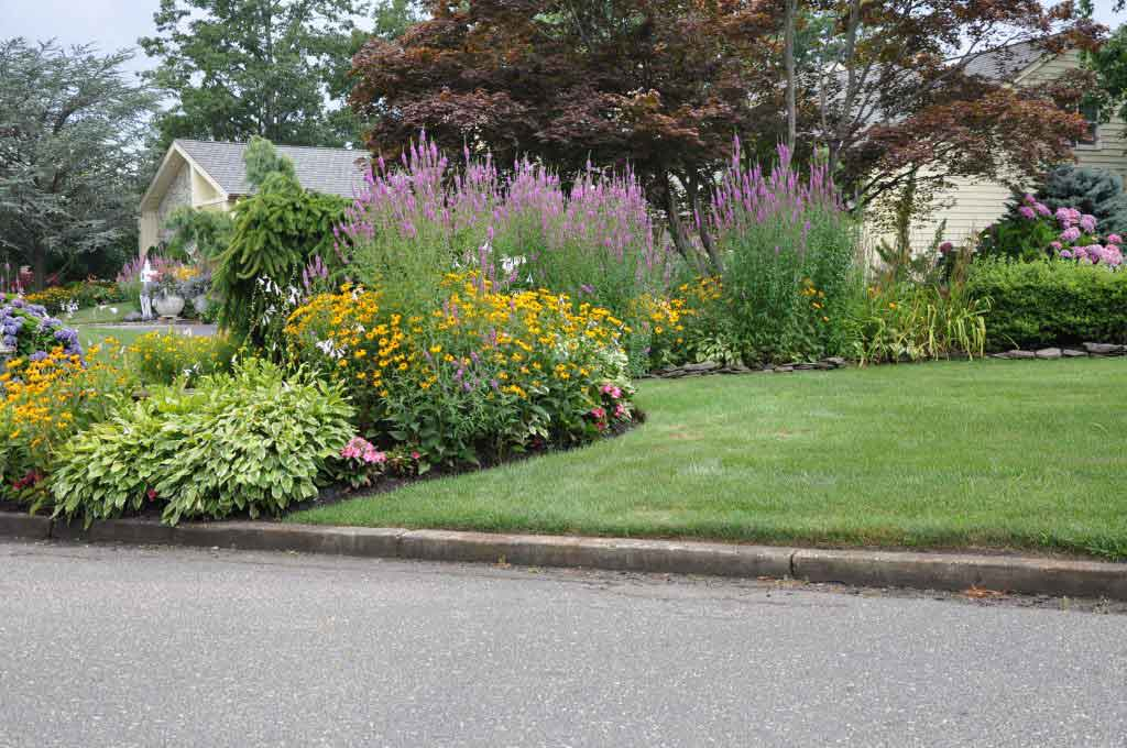 Flower Garden Suburban Neighborhood
