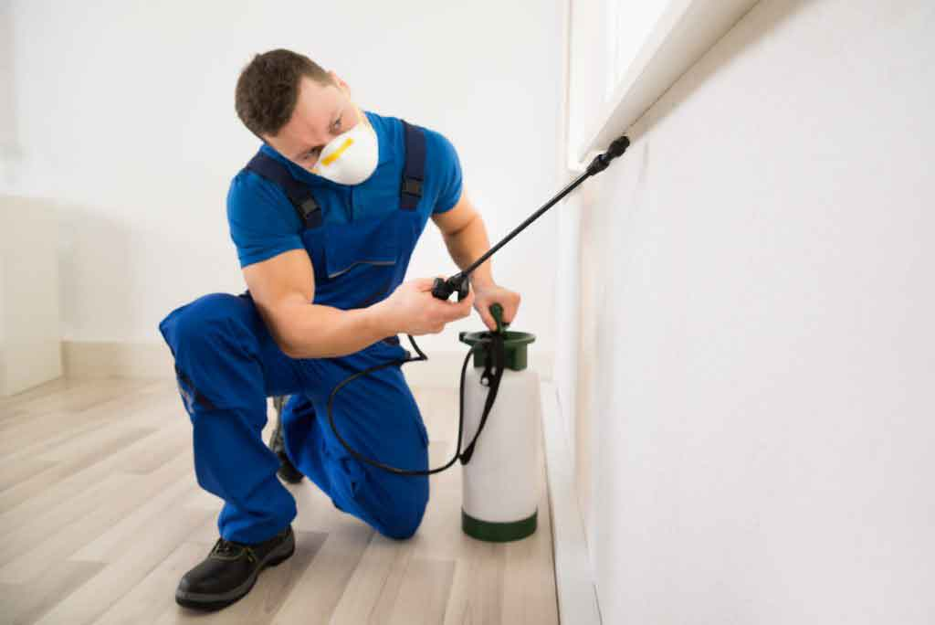 pest controller spraying a home
