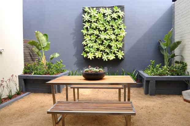 a zen garden in balmain selling houses australia