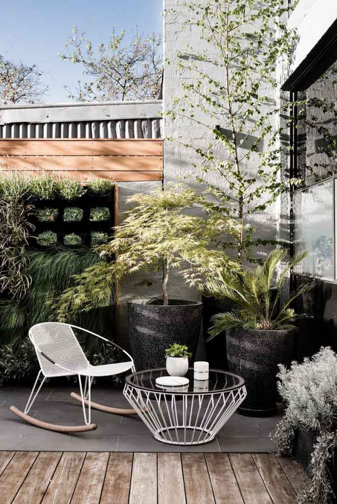 indoor plants gardens home