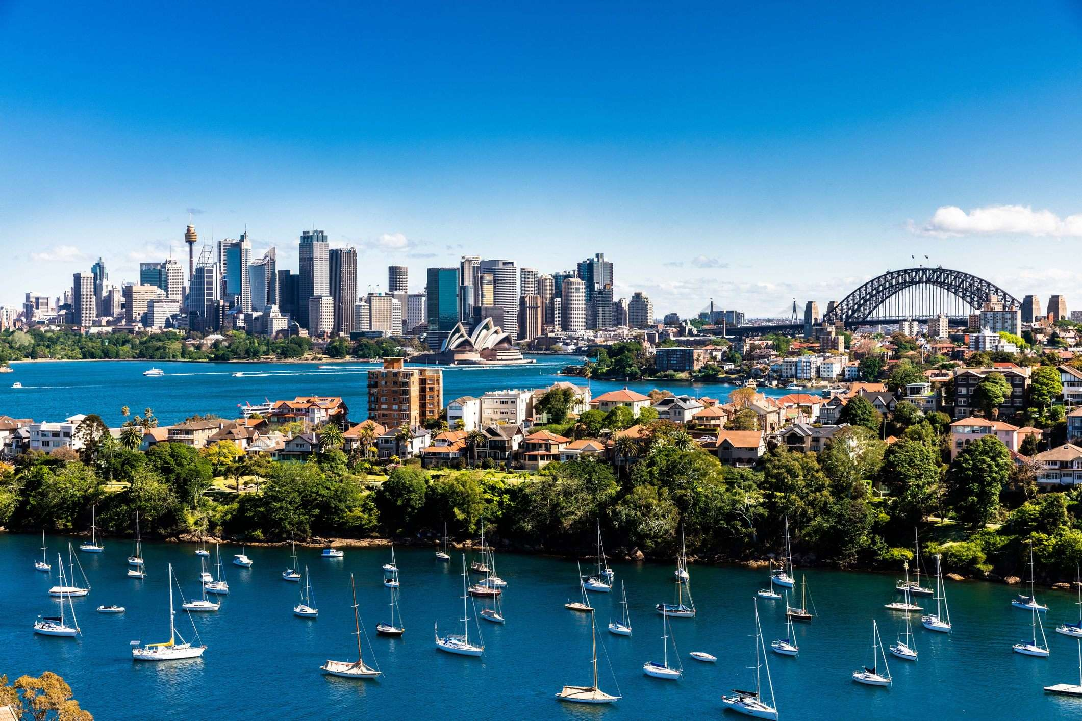 OpenAgent Article Image - Sydney and NSW property market update - December  2020
