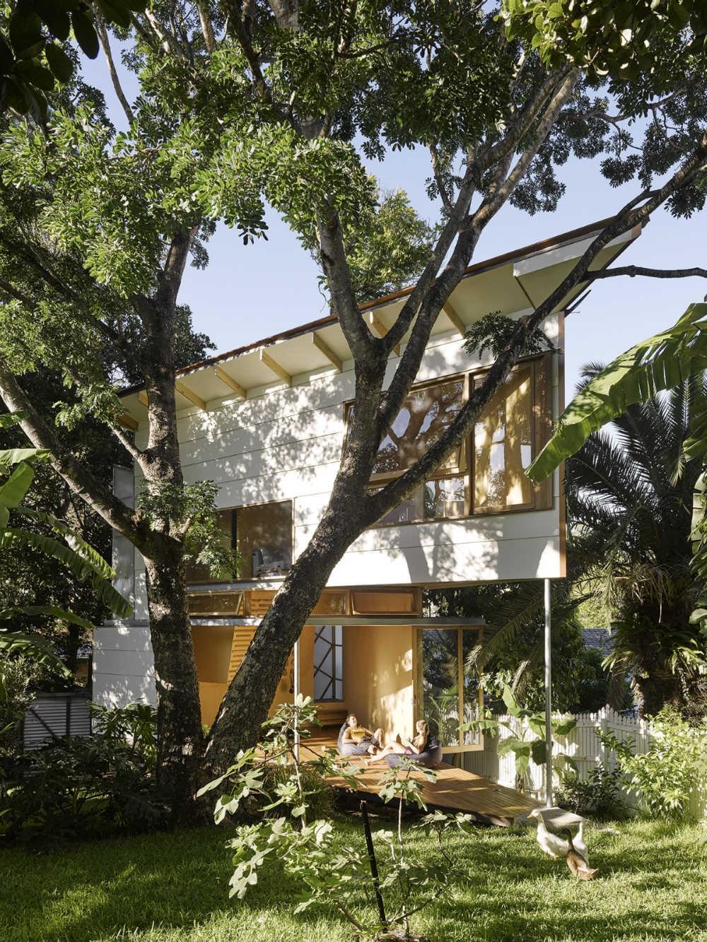 Taringa Treehouse